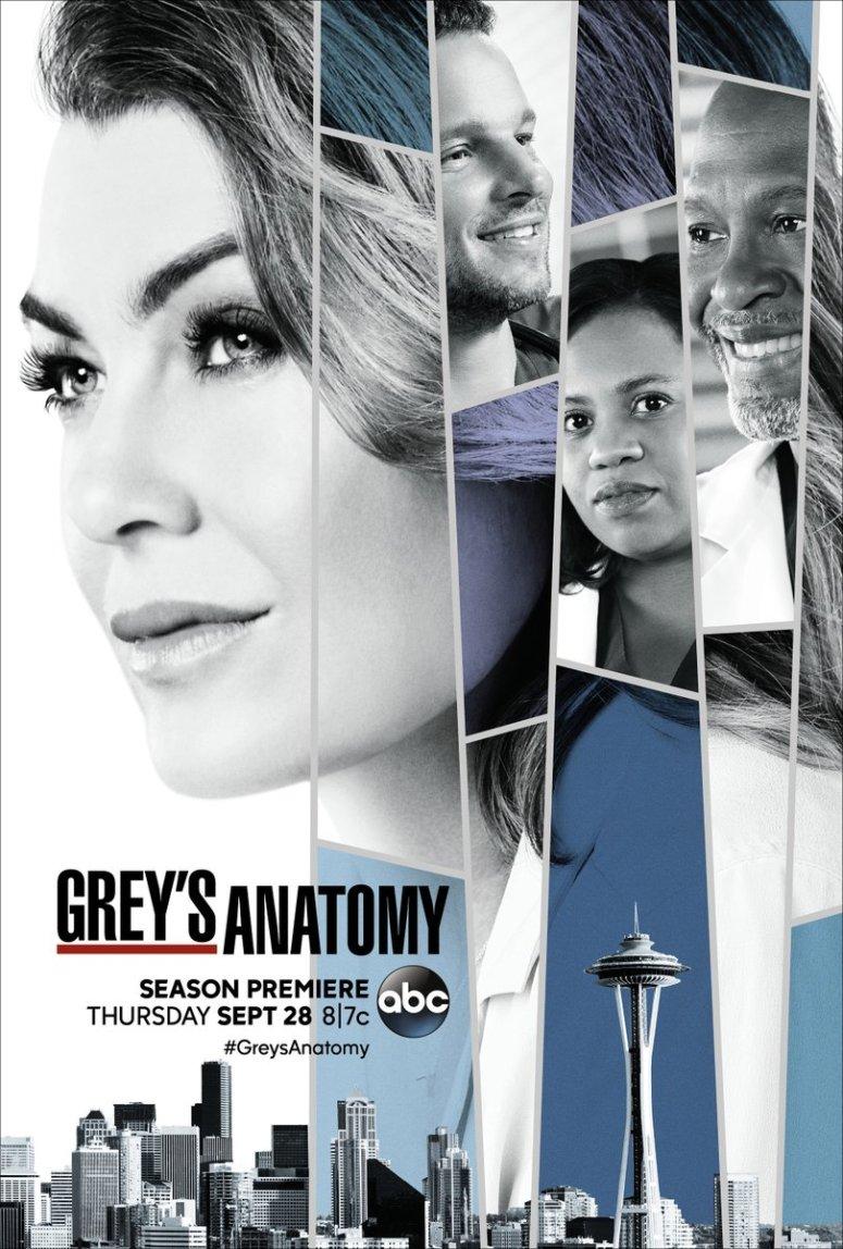 Grey's Anatomy_ABC_S14_P