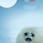 Our Planet_Netflix_P (4)